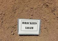Brickies Loam (bulk)